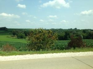 Iowa County Side